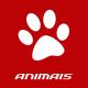 Canecas de Animais e Bichos